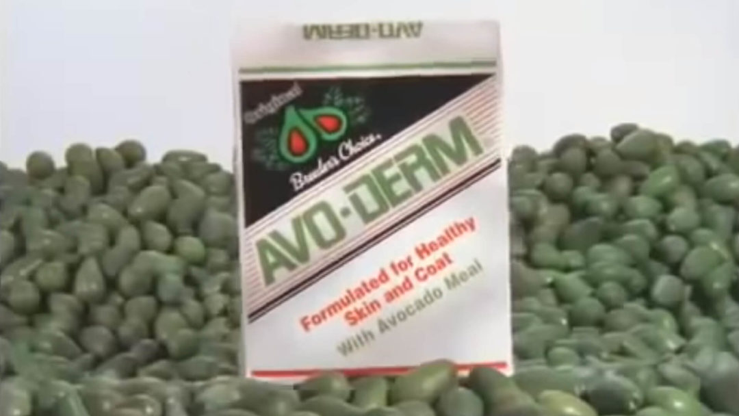 Avo-Derm Scratchy - Video Poster